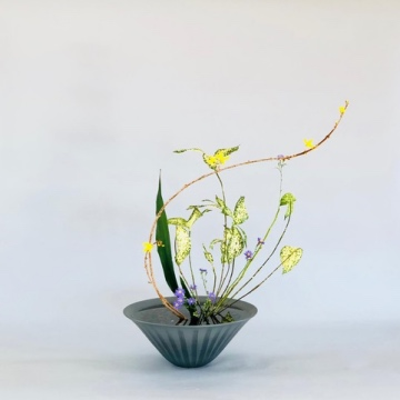 Ikebana International Zurich Chapter